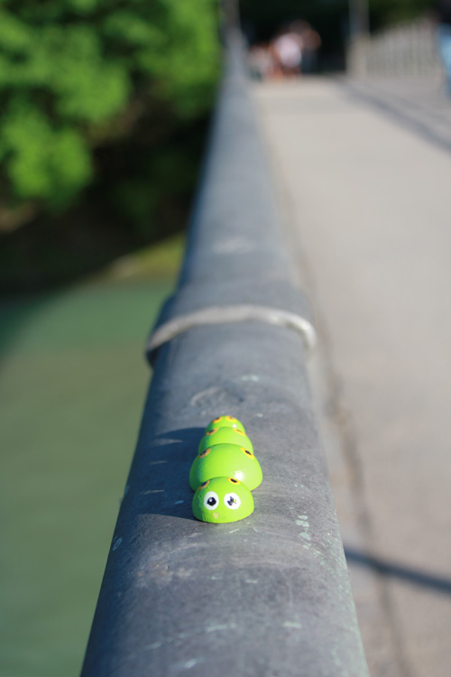 bruco by pao a Monaco - Caterpillar in Munchen